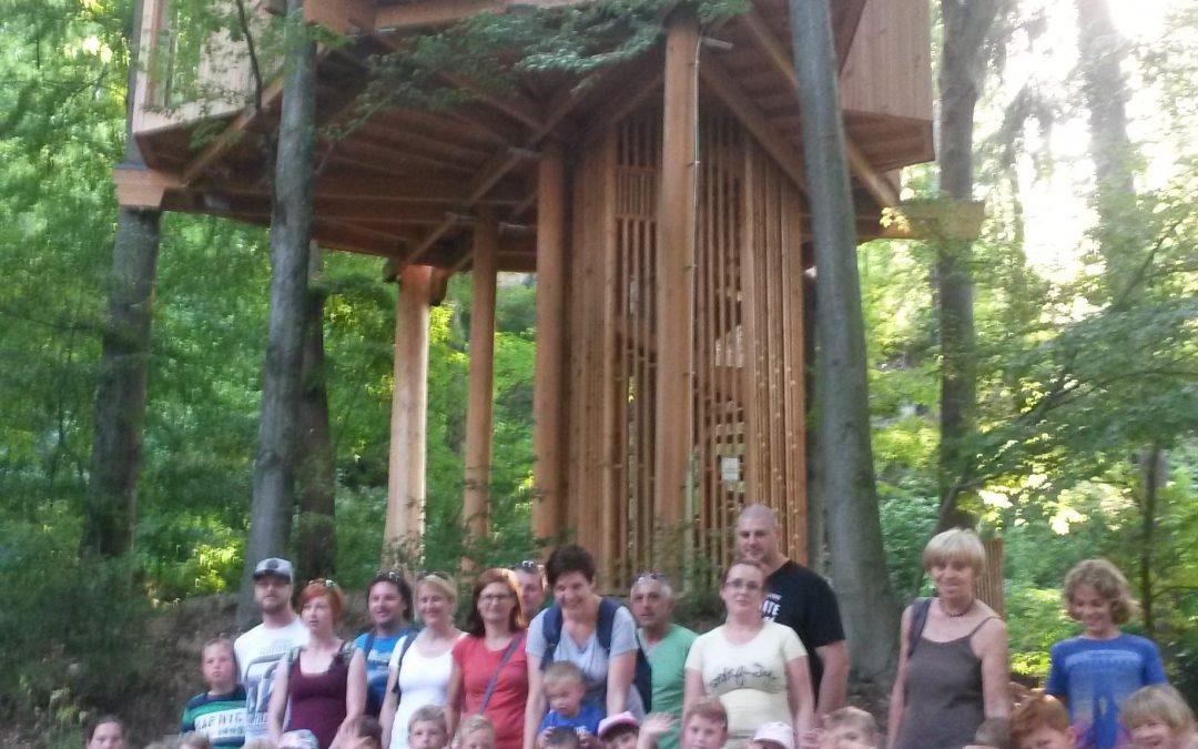 Pohod in ogled drevesne hiške