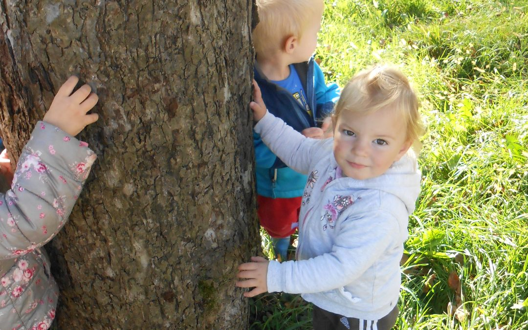 Otrok odkriva, spoznava in primerja živo in neživo naravo.